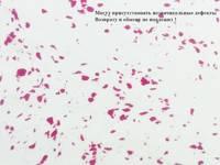 Фоамиран зефирный 1метр X 2метра/1мм (мрамор-малиновый)