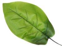 Зелень 24/14 см